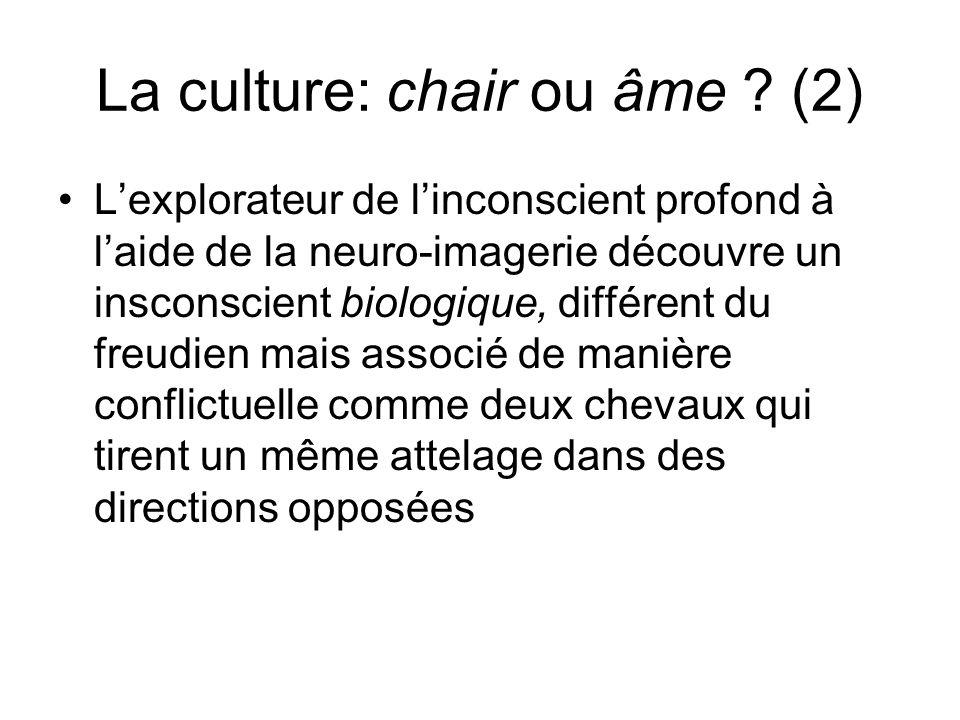 La culture: chair ou âme (2)