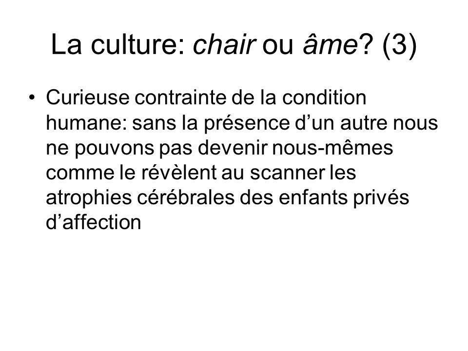 La culture: chair ou âme (3)