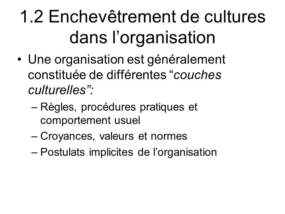 1.2 Enchevêtrement de cultures dans l'organisation