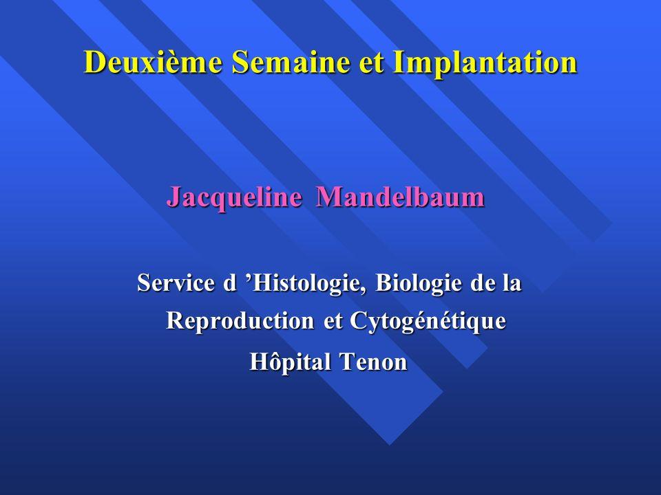 Deuxième Semaine et Implantation