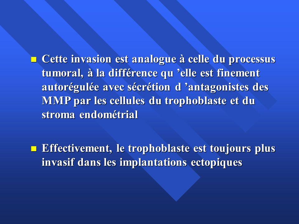 Cette invasion est analogue à celle du processus tumoral, à la différence qu 'elle est finement autorégulée avec sécrétion d 'antagonistes des MMP par les cellules du trophoblaste et du stroma endométrial