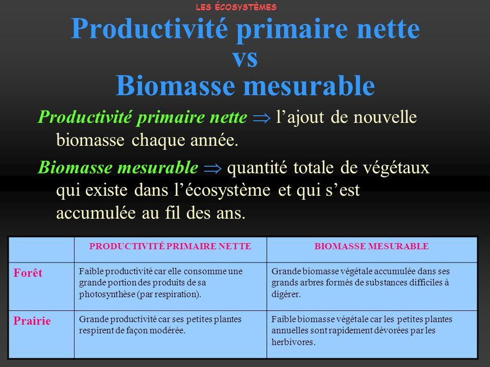 Productivité primaire nette vs Biomasse mesurable