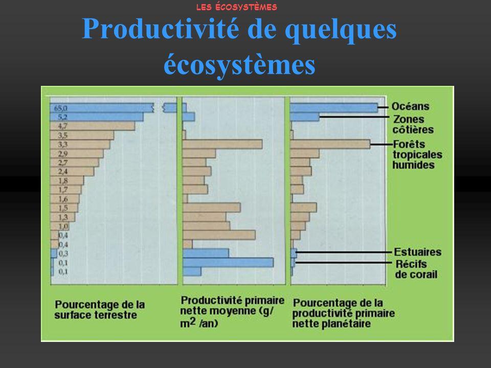 Productivité de quelques écosystèmes