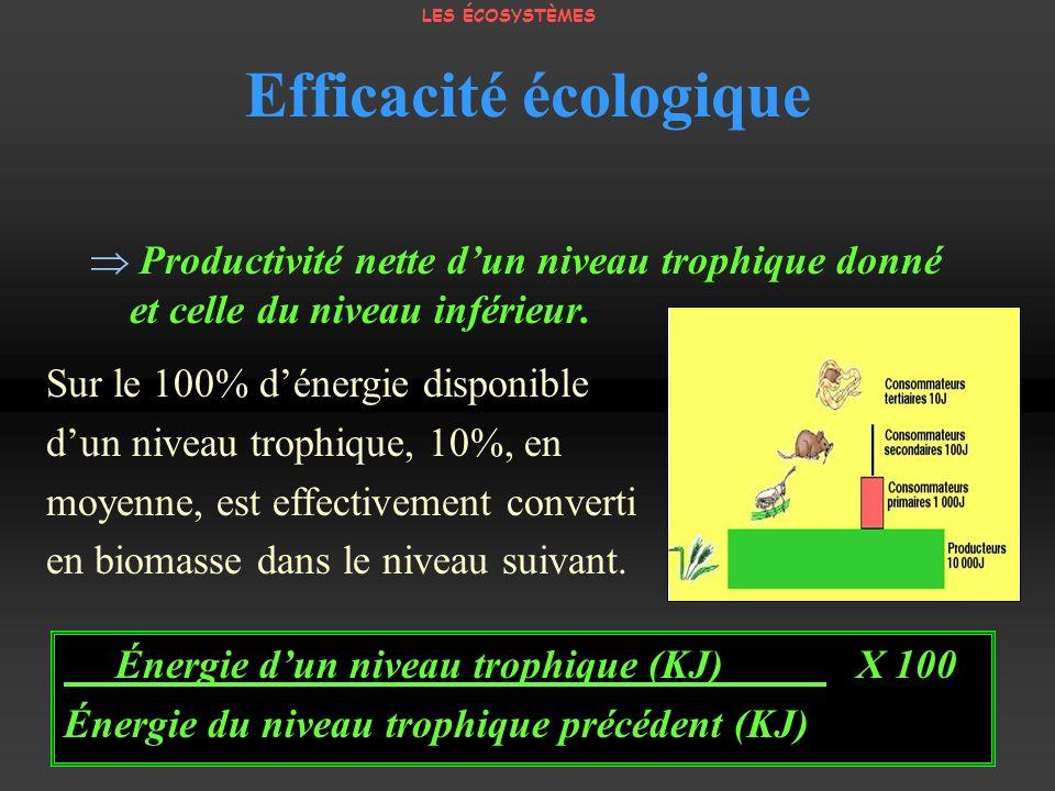 Efficacité écologique