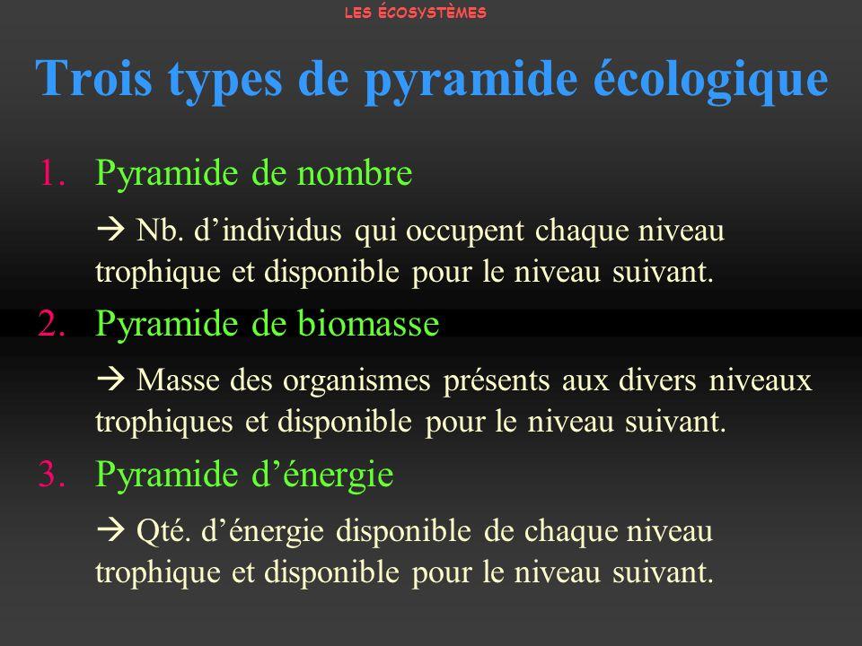 Trois types de pyramide écologique