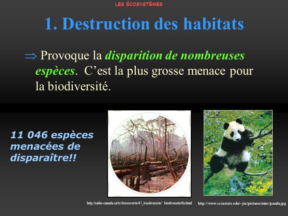 1. Destruction des habitats