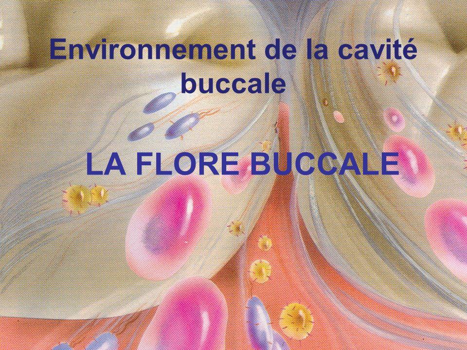 Environnement de la cavité buccale