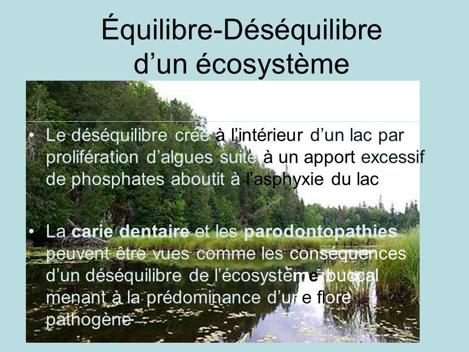 Équilibre-Déséquilibre d'un écosystème