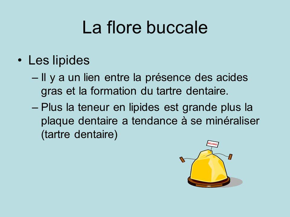 La flore buccale Les lipides