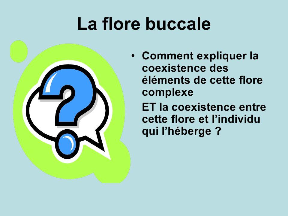 La flore buccale Comment expliquer la coexistence des éléments de cette flore complexe.