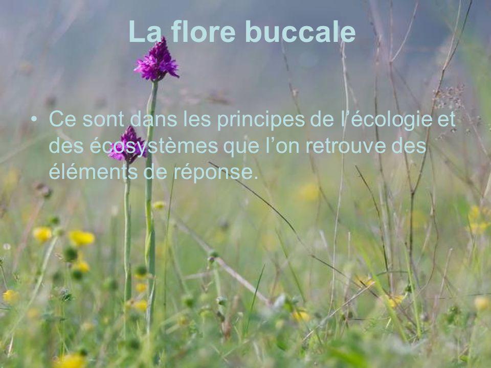 La flore buccale Ce sont dans les principes de l'écologie et des écosystèmes que l'on retrouve des éléments de réponse.