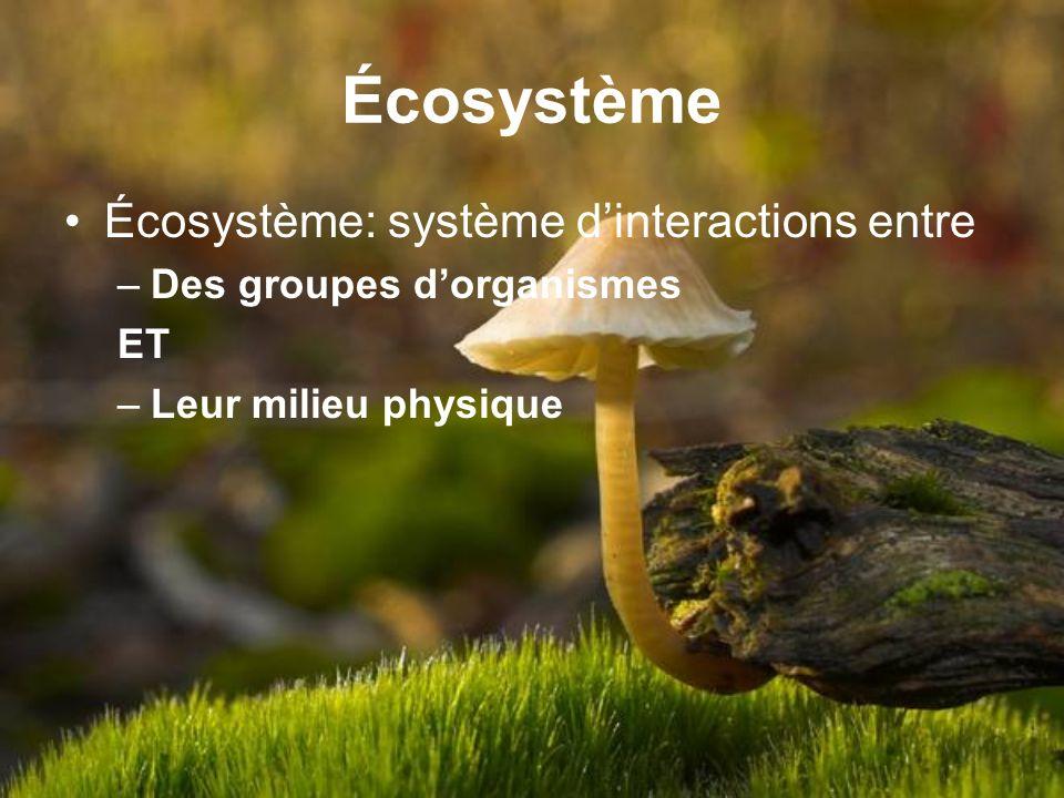 Écosystème Écosystème: système d'interactions entre