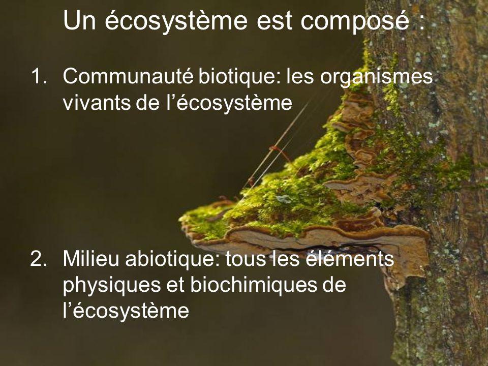 Un écosystème est composé :
