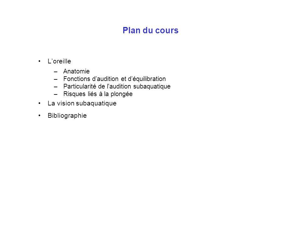 Plan du cours L'oreille La vision subaquatique Bibliographie Anatomie