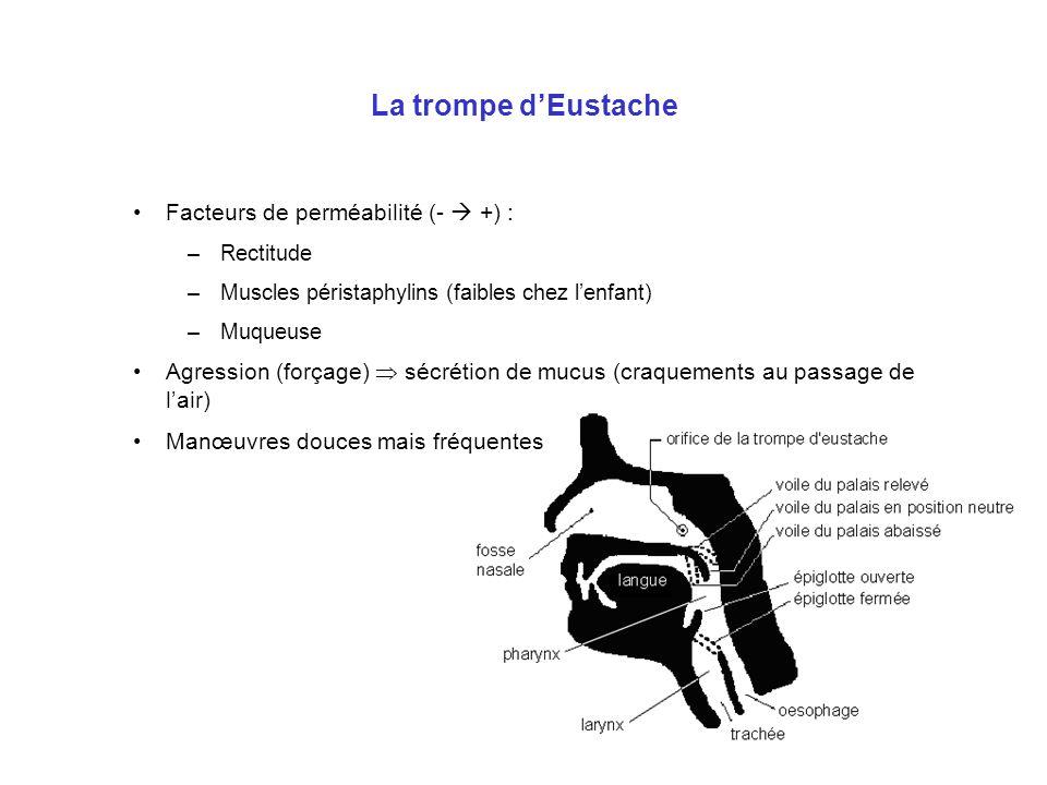 La trompe d'Eustache Facteurs de perméabilité (-  +) :