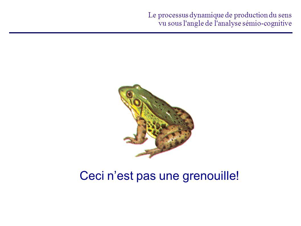 Ceci n'est pas une grenouille!