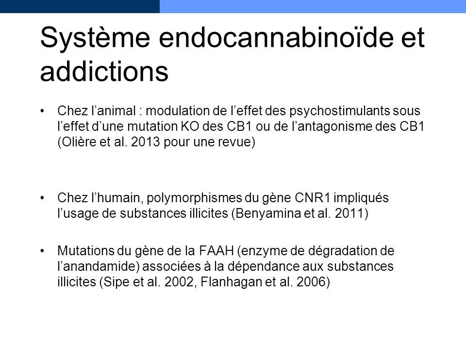 Système endocannabinoïde et addictions