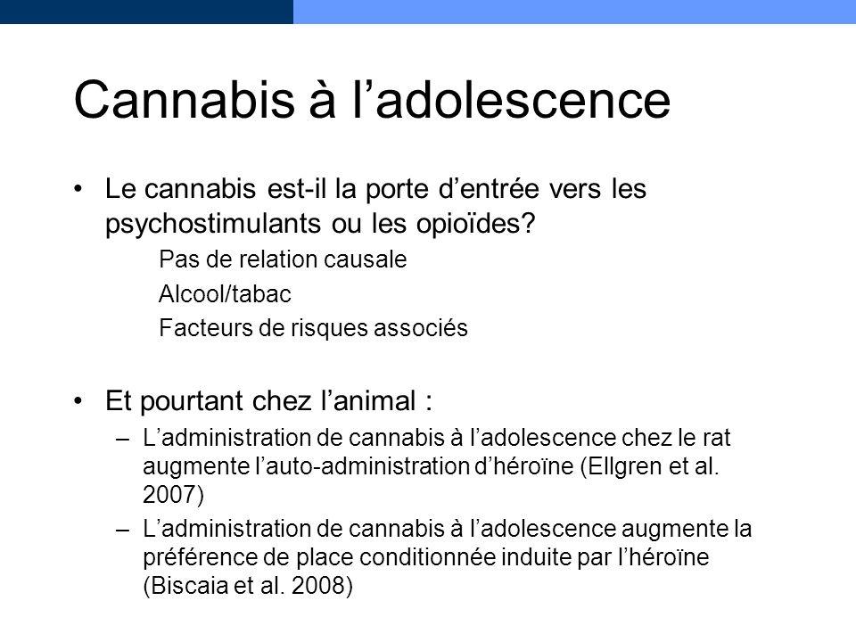 Cannabis à l'adolescence
