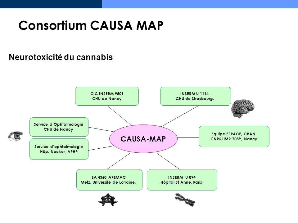 Consortium CAUSA MAP Neurotoxicité du cannabis CAUSA-MAP