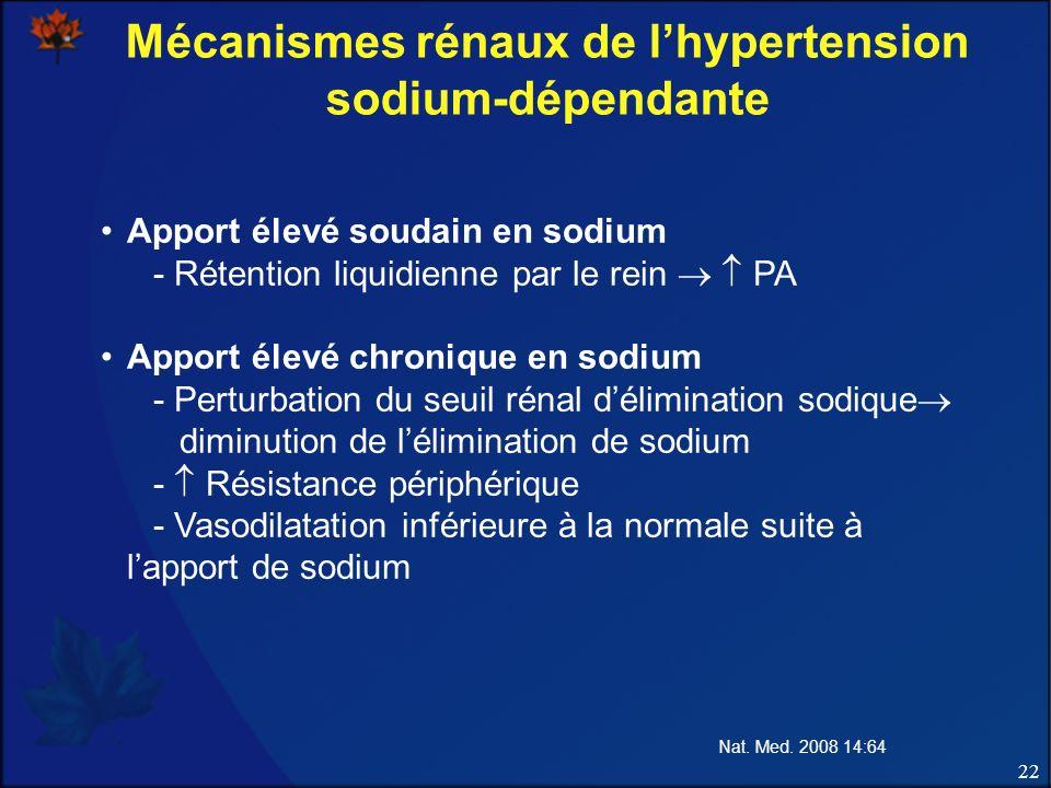 Mécanismes rénaux de l'hypertension sodium-dépendante