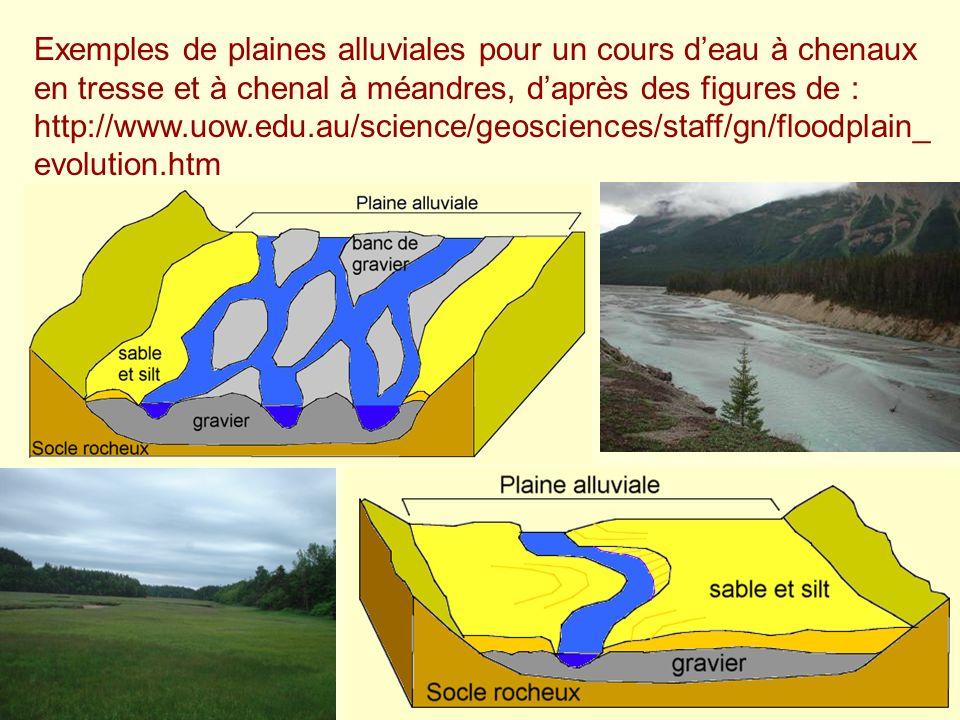 Exemples de plaines alluviales pour un cours d'eau à chenaux en tresse et à chenal à méandres, d'après des figures de : http://www.uow.edu.au/science/geosciences/staff/gn/floodplain_evolution.htm