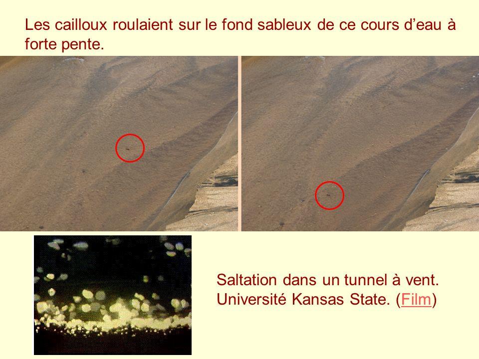 Les cailloux roulaient sur le fond sableux de ce cours d'eau à forte pente.