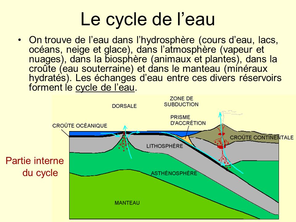 Partie interne du cycle