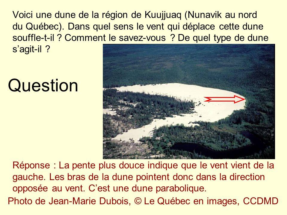 Voici une dune de la région de Kuujjuaq (Nunavik au nord du Québec)