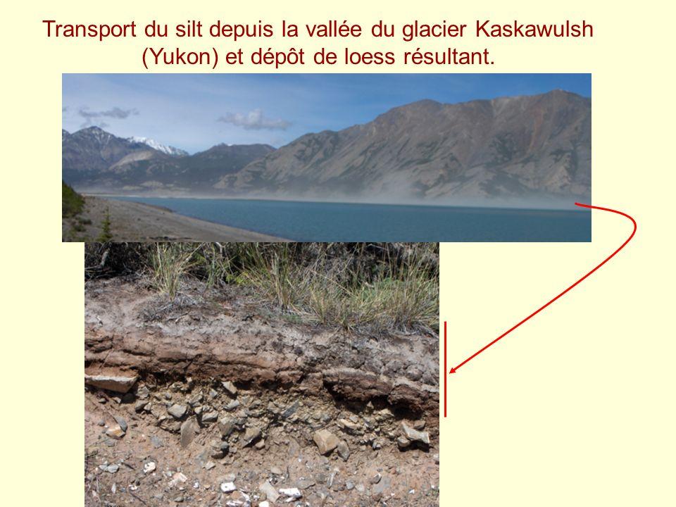 Transport du silt depuis la vallée du glacier Kaskawulsh (Yukon) et dépôt de loess résultant.