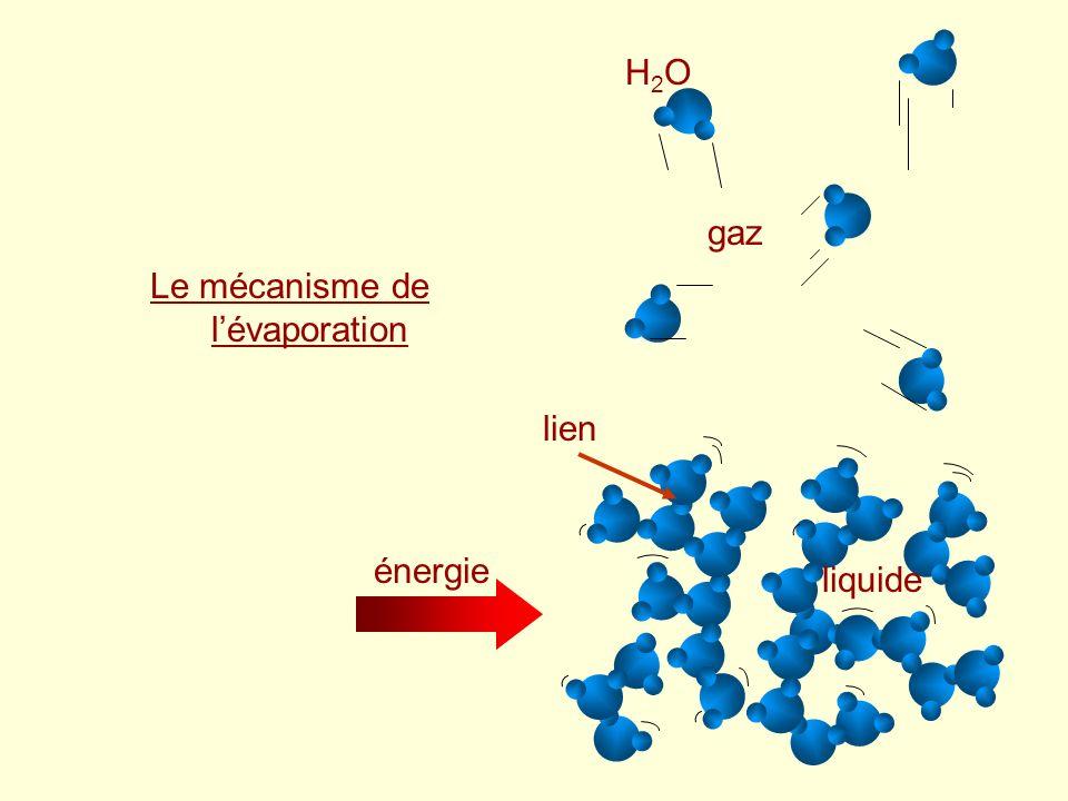 Le mécanisme de l'évaporation