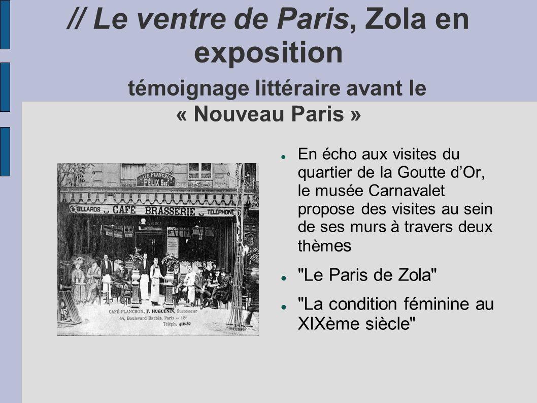 // Le ventre de Paris, Zola en exposition témoignage littéraire avant le « Nouveau Paris »
