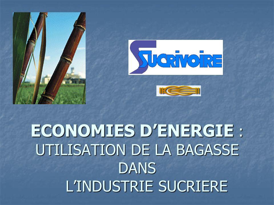 ECONOMIES D'ENERGIE : UTILISATION DE LA BAGASSE DANS L'INDUSTRIE SUCRIERE