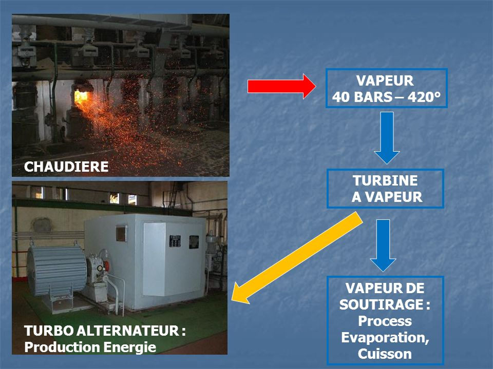 Process Evaporation, Cuisson
