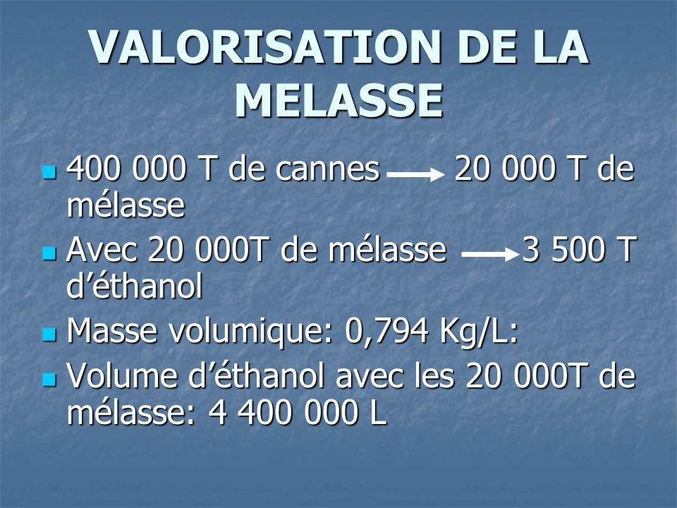 VALORISATION DE LA MELASSE