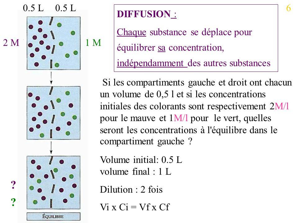 0.5 L 0.5 L. 6. DIFFUSION : Chaque substance se déplace pour équilibrer sa concentration, indépendamment des autres substances.