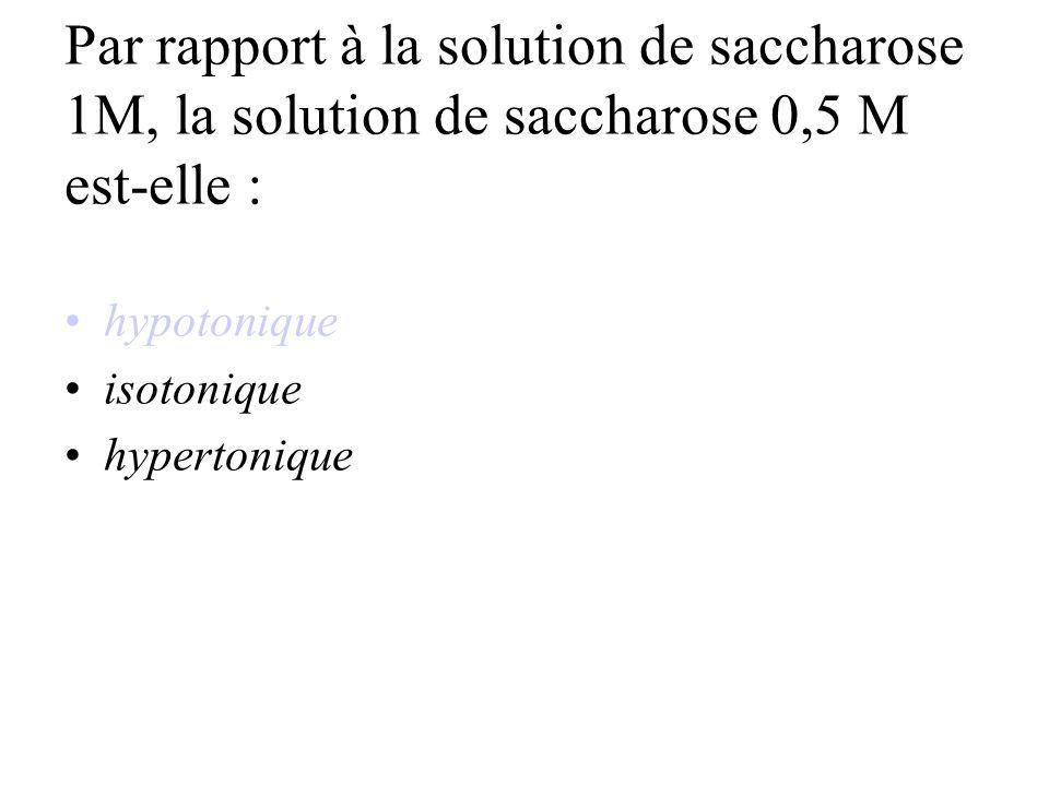 Par rapport à la solution de saccharose 1M, la solution de saccharose 0,5 M est-elle :