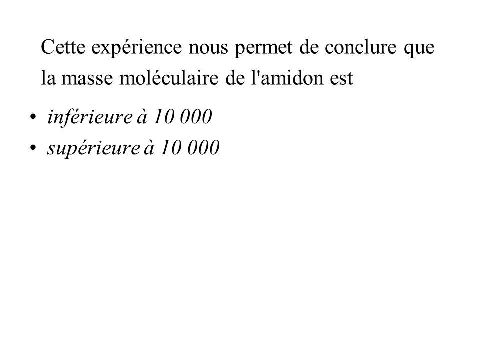 Cette expérience nous permet de conclure que la masse moléculaire de l amidon est