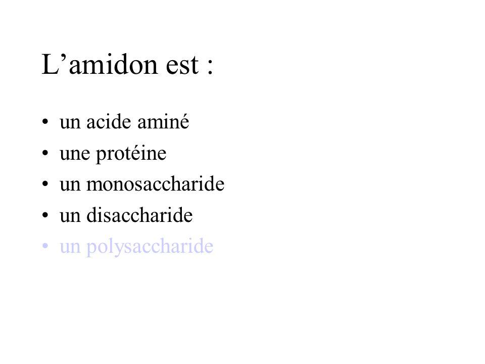 L'amidon est : un acide aminé une protéine un monosaccharide