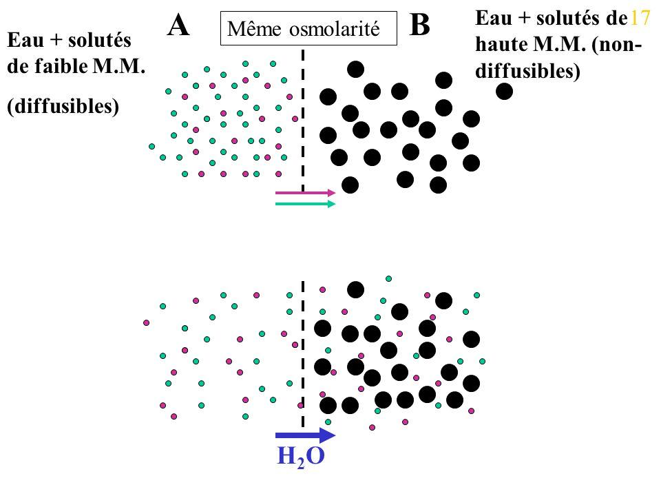 A B H2O Eau + solutés de haute M.M. (non-diffusibles) 17