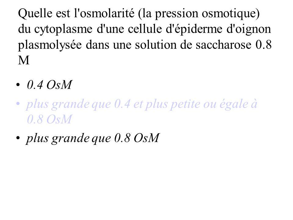 Quelle est l osmolarité (la pression osmotique) du cytoplasme d une cellule d épiderme d oignon plasmolysée dans une solution de saccharose 0.8 M
