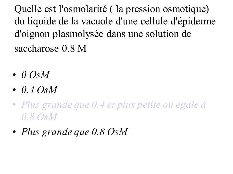 Quelle est l osmolarité ( la pression osmotique) du liquide de la vacuole d une cellule d épiderme d oignon plasmolysée dans une solution de saccharose 0.8 M