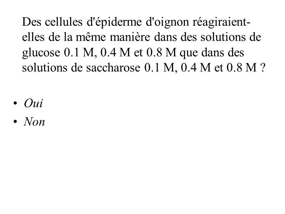 Des cellules d épiderme d oignon réagiraient-elles de la même manière dans des solutions de glucose 0.1 M, 0.4 M et 0.8 M que dans des solutions de saccharose 0.1 M, 0.4 M et 0.8 M