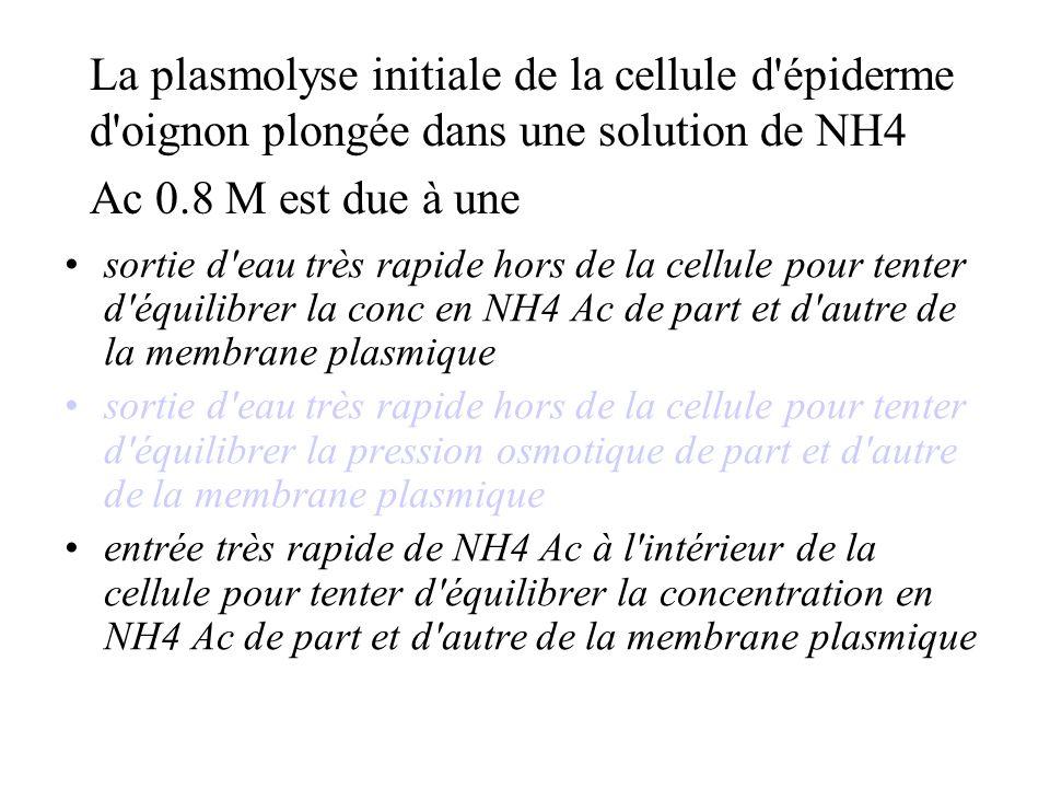 La plasmolyse initiale de la cellule d épiderme d oignon plongée dans une solution de NH4 Ac 0.8 M est due à une