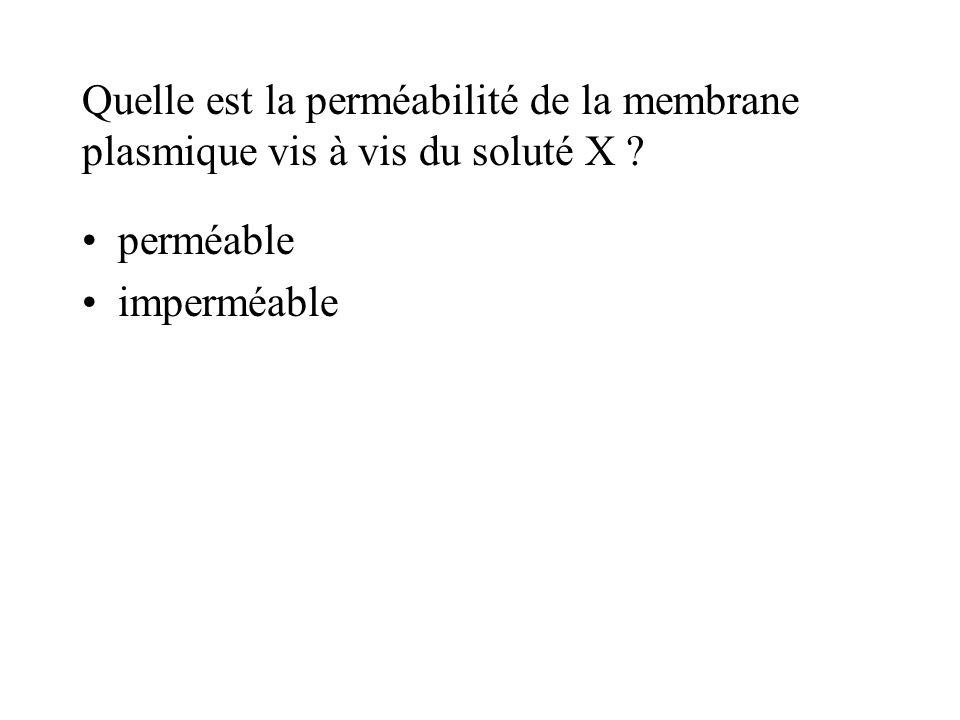 Quelle est la perméabilité de la membrane plasmique vis à vis du soluté X