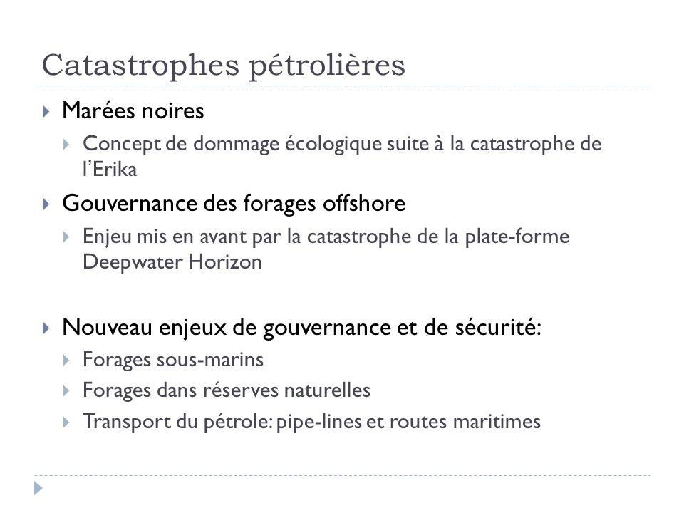 Catastrophes pétrolières