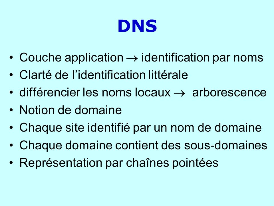 DNS Couche application  identification par noms