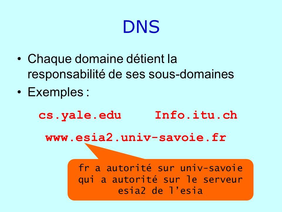 DNS Chaque domaine détient la responsabilité de ses sous-domaines