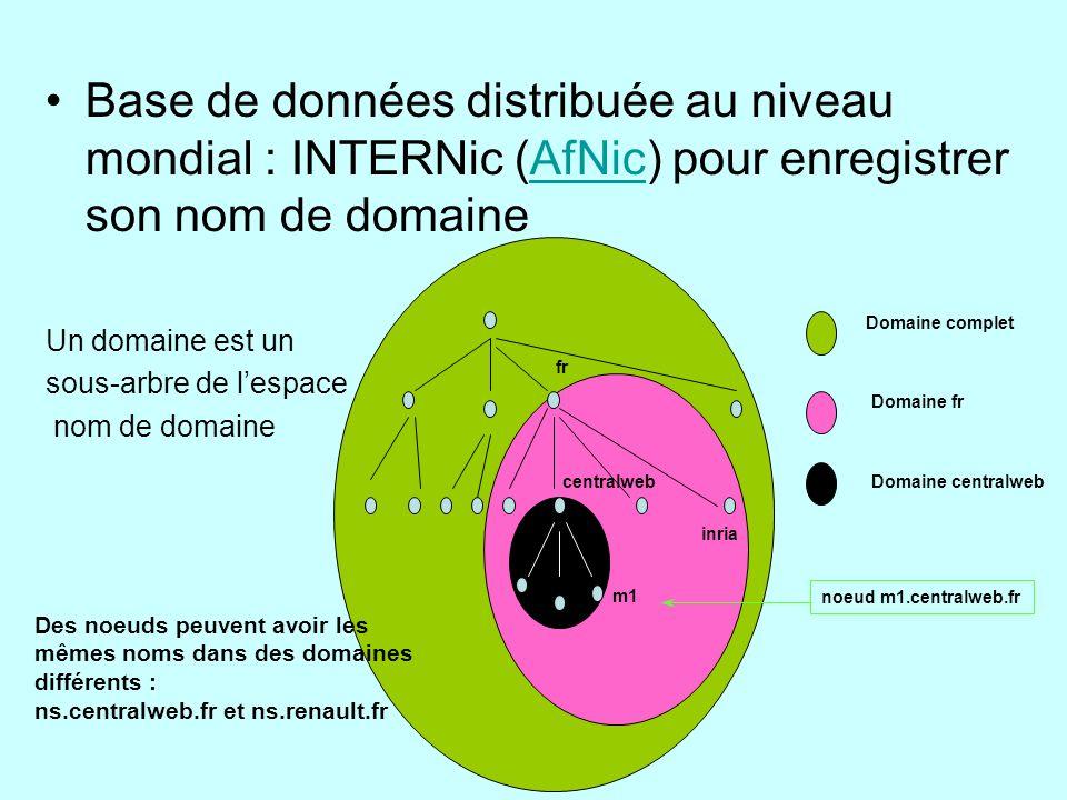 Base de données distribuée au niveau mondial : INTERNic (AfNic) pour enregistrer son nom de domaine