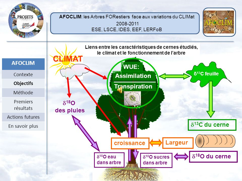 CLIMAT 2008-2011 AFOCLIM WUE: Assimilation Transpiration d18O