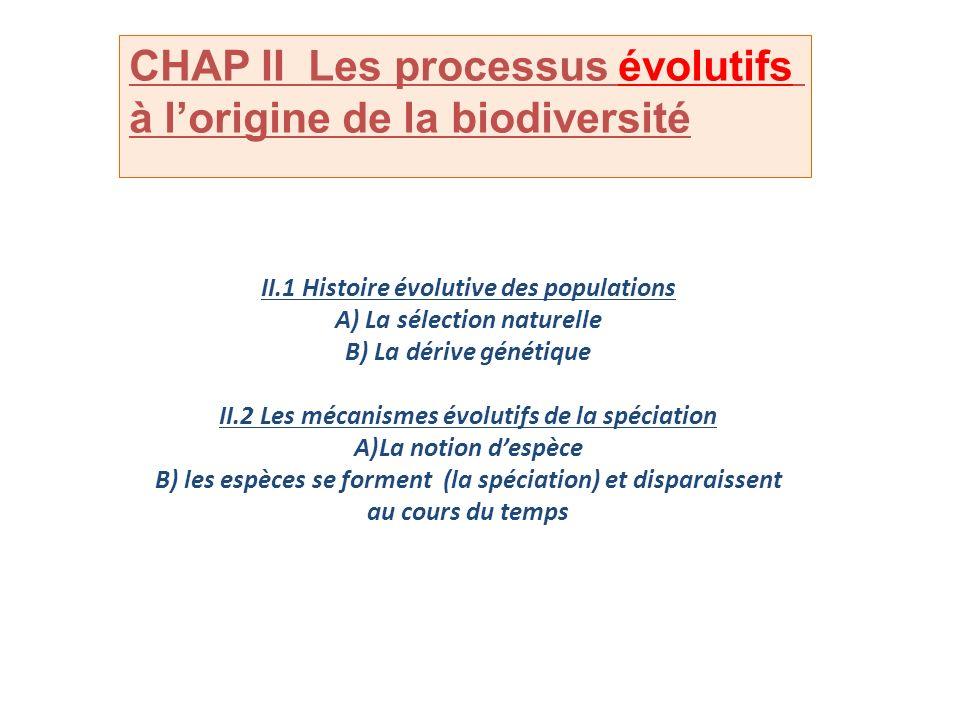 CHAP II Les processus évolutifs à l'origine de la biodiversité